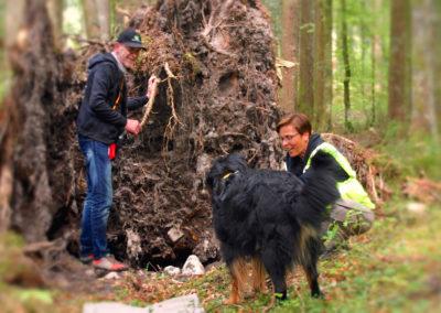 Active Mantrailing Wald-Seminare