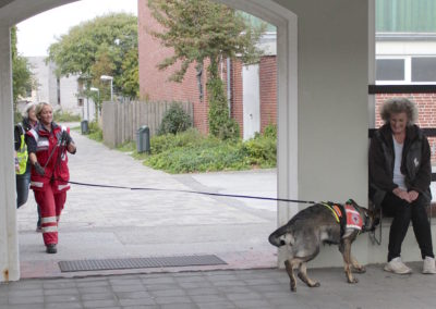 Mantrailworkshop mit der DRK- Rettungshundestaffel Sylt SYlt