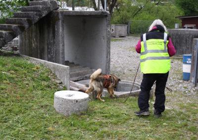 Mantrailing-Intensivtraining im Trümmerfeld